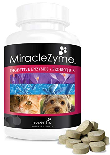 Top 10 best selling list for best supplement for loose stool in dogs