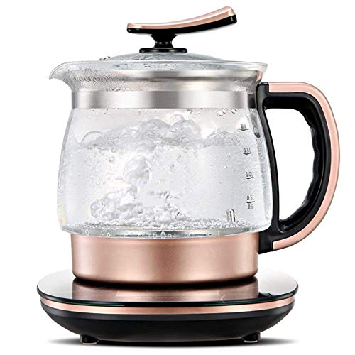 RYTLG Electric Teapot Health Pot Multifunction Home Insulation Tea Maker Health Cup Kettle