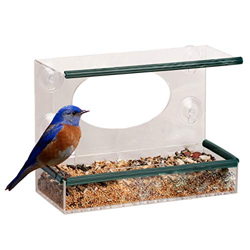 SHS trading Clear Hanging Perspex Bird Feeder