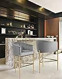 Iconic Home Cyrene Bar Stool Chair Velvet Upholstered Shelter Arm Shell Design 3 Legged Gold Tone Solid Metal Base Modern Contemporary, SILVER