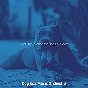 Cool Background for Dogs at Home