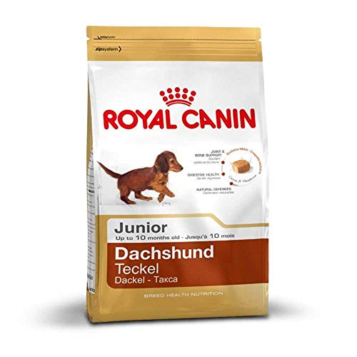 Royal Canin Royal Canin Club Breed Dachshund 30 Junior 1,5kg
