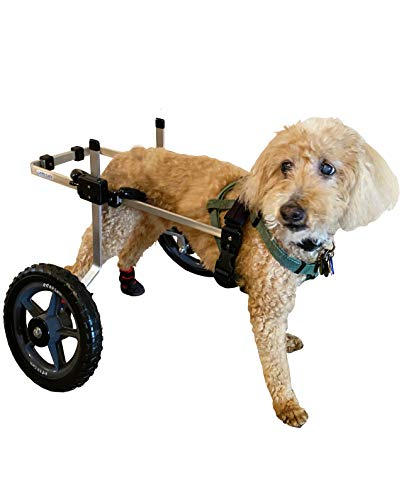 wheelchair carts K9 Carts Dog Wheelchair (Medium) - Made in The USA