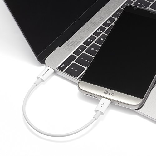 Amazon Basics - Verbindungskabel, USB Typ C auf USB Typ C, USB 2.0, 15,2 cm, Weiß