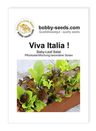 Viva Italia ! Babyleaf Pflücksalatsamen Mischung von Bobby-Seeds Portion