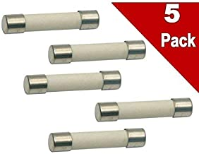 (Pack of 5) Microwave Replacement Fuse, 20A, 250V, Ceramic Line Fuse, Fast Blow Microwave Fuse