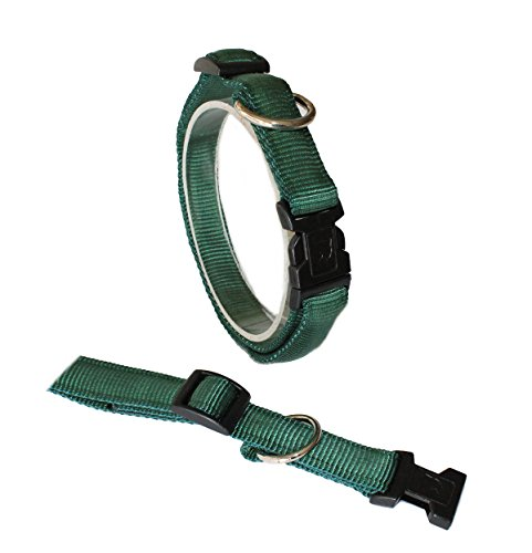 Ernst Koch U3301512 Nylon-Halsband UNI gepolstert  mit Klickverschluss  stufenlos verstellbar, S, grün