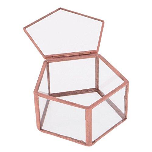 OEM Geometrisches Glas Terrarium F?nfeck Box Schmuckschatulle Glas Sukkulente Pflanzen Pflanzgef?? Deko Tischplatte Sukkulente Moos Blumentopf