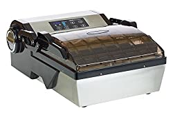 VacMaster VP112S Home Chamber Vacuum Sealer Review - see it on Amazon