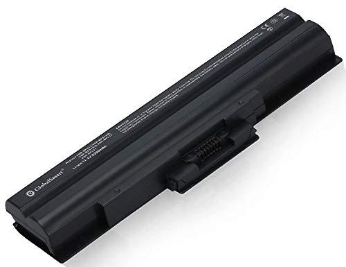 Globalsmart Batteria di Portatile ad Alta capacità per Sony VGP-BPS13S 6 Cellas Nero