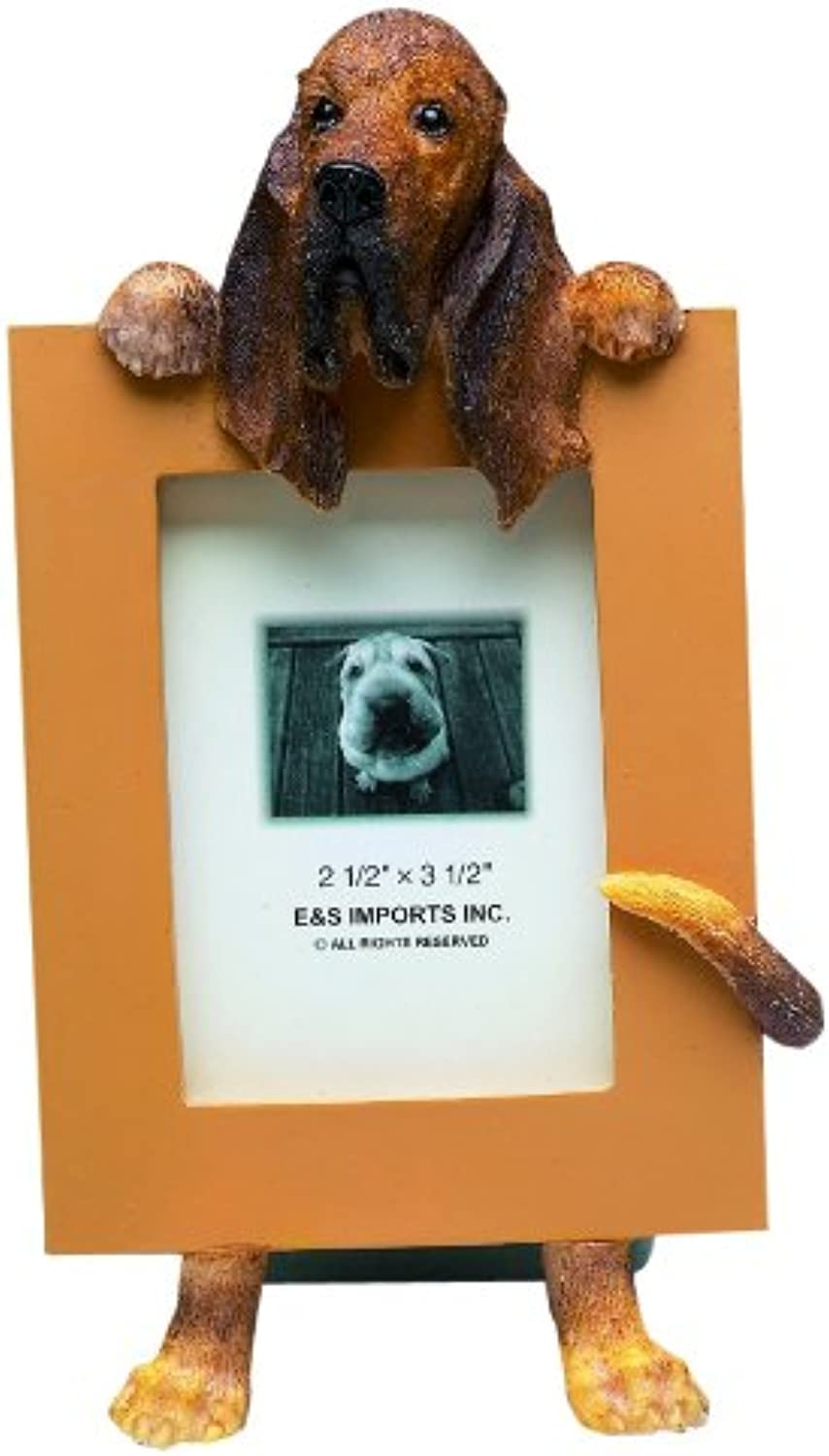 Bloodhound Picture Frame Holds Your Favorite 2.5 by 3.5 Inch Photo, Hand Painted Realistic Looking Bloodhound Stands 6 Inches Tall Holding Beautifully Crafted Frame, Unique and Special Bloodhound Gifts for Bloodhound Owners