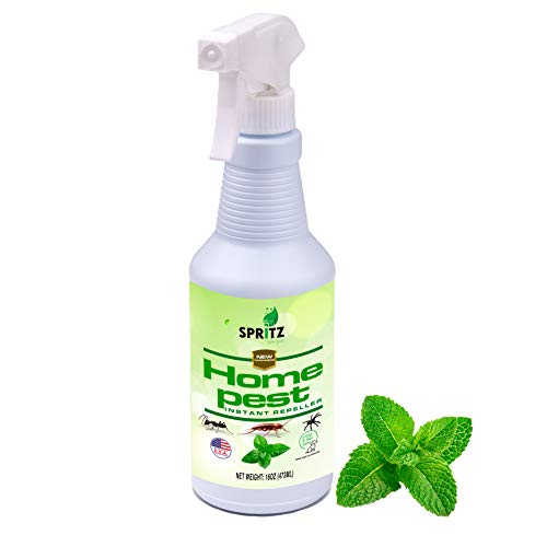 Spritz Peppermint Oil Spray For Bugs & Insects | 100% Non-toxic | Made With Essential Oils - Pet Safe And Effective | Ant, Roach, And Spider Repellent 16oz