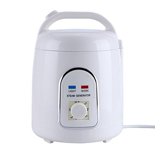 Fdit Sauna Steamer Vapor 1.5-1.8L Sauna portátil Steam Sauna SPA para Hogar Baño 110V / 220V(220V EU Plug)