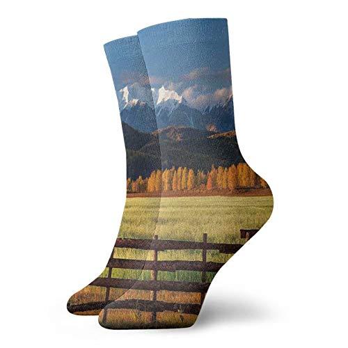 Calcetines de compresión para hombre y mujer, acolchados, atléticos, Obra de arte panorámica de campo de granja con nieve cubierta de montaña, valle de la naturaleza, bosque, talla única