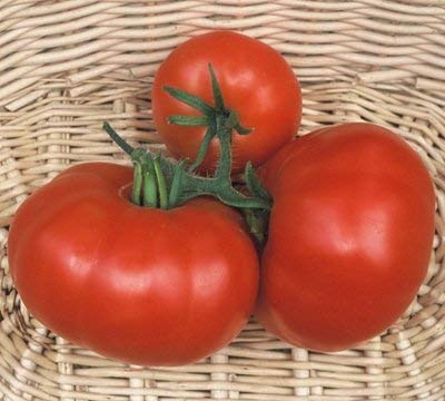30 graines de Marmande Vf - Saison Tomates mi