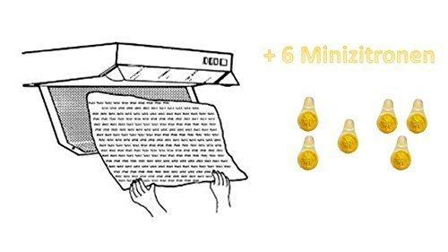 Dunst-Fettfilter - 2er, für alle gängigen Abzugshauben, + 6 mini Duftzitronen für Ihr Geschirrspüler