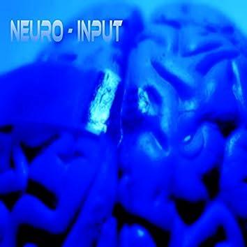 Neuro Input