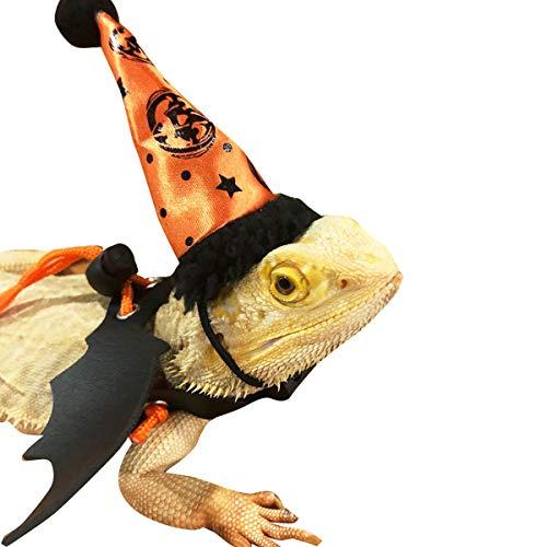 Reptilien Halloween Geschirr Leinenhut Set für Bart Drachen Eidechse Fledermaus Flügel Ledergeschirr + Kappe