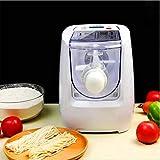 InLoveArts Máquina de Pasta eléctrica, máquina de Fideos de 13 moldes, Pantalla LCD, automática para Crear Pasta...