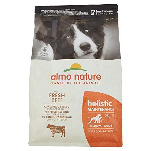 Almo Nature Dog Dry PFC Holistic Adult Buey Razas Medianas, 2 kgs, 2000