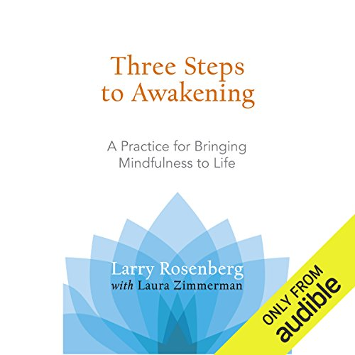 Three Steps to Awakening audiobook cover art