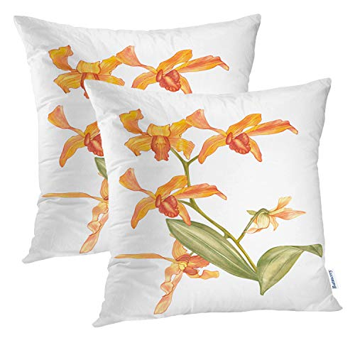 Batmerry Flower Orange Decorative Pillow Covers, 16 x 16 Inch Purple Plant Watercolor Floral with Orchid Flowers On Double Sided Throw Pillow Covers Sofa Cushion Cover Square 16 Inches(Set of 2)