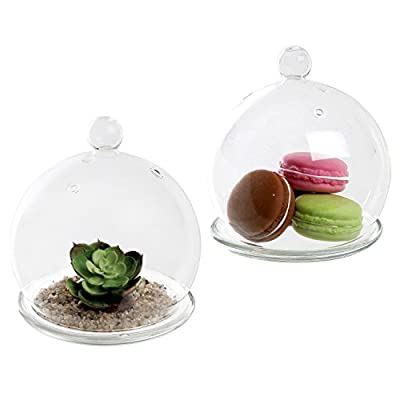 Set of 2 Decorative Clear Glass Dome Cloche Bell Jars / Succulent Terrariums Air Plant Covers w/ Saucers