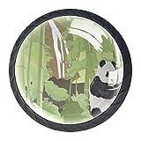 Panda Bamboo Waterfall Forest Tree Acuarela, 4 unidades de ABS para aparador, pomos redondos para aparador, cajones, gabinete, cajón de cocina