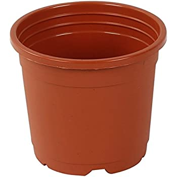 "CAPPL Sunrise 14.5 Cm Gardening Plant Container (Terracotta Nursery Plastic Pot 6"") (Pack of 10)"