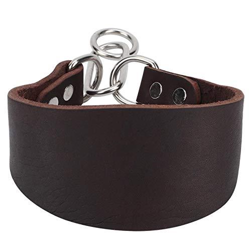 DAUERHAFT Collare Whippet, Spessore 4 mm, per Cani di Piccola Taglia, Come Il Greyhound Whippet, ECC, Collare per Cani martingala Extra Morbido