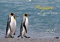 Pinguine aus aller Welt (Wandkalender 2022 DIN A2 quer): Wandkalender mit 13 Bildern (Monatskalender, 14 Seiten )