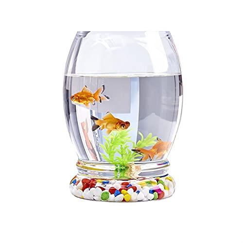 ZLQBHJ Acuarios, Tanques pequeños y medianos, Tanque de Pescado de Vidrio, acuarios de Escritorio para viviendas para Casas, paisajes ecológicos acuarios (Size : 34cm)