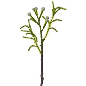 15″ Protea Silk Flower Stem -Gray/Green (Pack of 12)