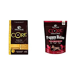 Wellness CORE Natural Dry Large Breed Dog Food