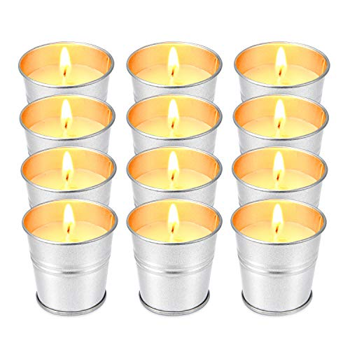 Hausware Citronella Candle Outdoor and Indoor Soy Wax Candles Set 12 Pack