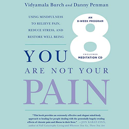 You Are Not Your Pain Audiobook By Vidyamala Burch, Danny Penman cover art