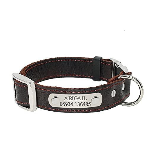TTCI-RR Collar Perro Personalizado Collares personalizados para perros de cuero genuino Perrito de perros Placa de placa de placa de placa ajustable Grabado gratis Etiquetas de identificación de PET p