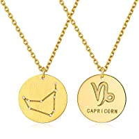 ChicSilver 925 Stilber Kette Steinbock- Damen Sternzeichen Kette, Tierszeichen Halskette für Damen Frauen