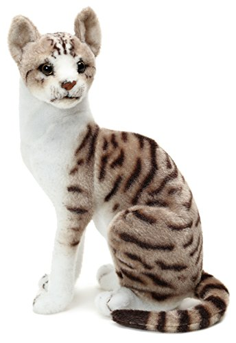 VIAHART Amy The American Shorthair Cat | 14 Inch Stuffed Animal Plush | by Tiger Tale Toys