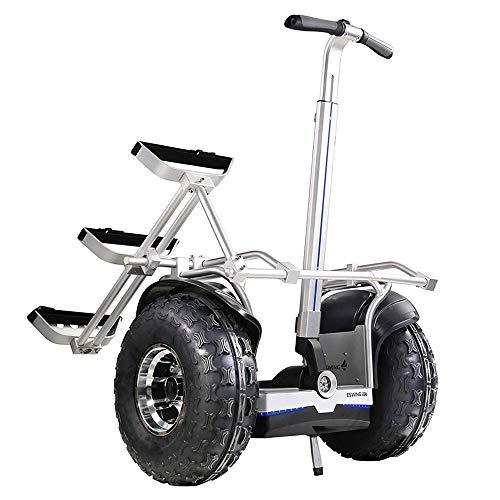Equilibrio eléctrico de 2 ruedas Coche, inteligente Scooter todo terreno 2400W Motor...