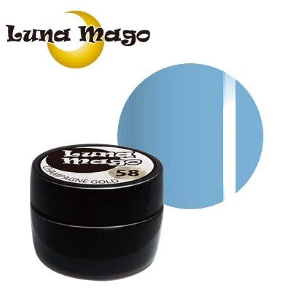 鉄シェーバーに同意するLuna Mago カラージェル 5g 041 スカイ