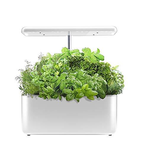 Interior Huerta Kit de Cultivo, Cultivo sin Suelo, Luz de Crecimiento Inteligente de Espectro Completo, Cultiva Tus propias Hierbas, Vegetales etc