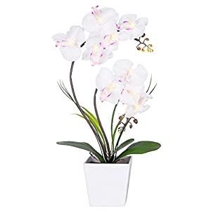 HOMESEASONS LED Lighted Artificial Flower Arrangement-Battery Operated Orchid Pot with 9 Lights