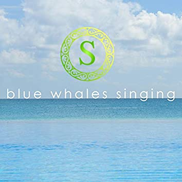 Blue Whales Singing (Yoga Music Album)