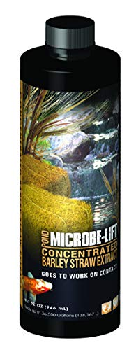 Microbe Lift 32-Ounce Pond Concentrated Extract Barley Straw MLCBSE1L