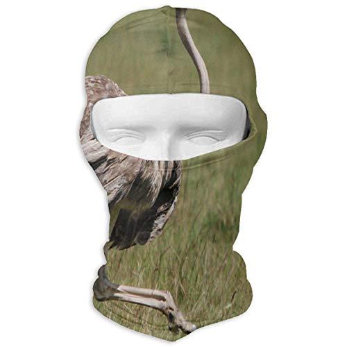 Vidmkeo Balaclava Ostrich Running Full Face Masks Ski Headwear Motorcycle Hood For...