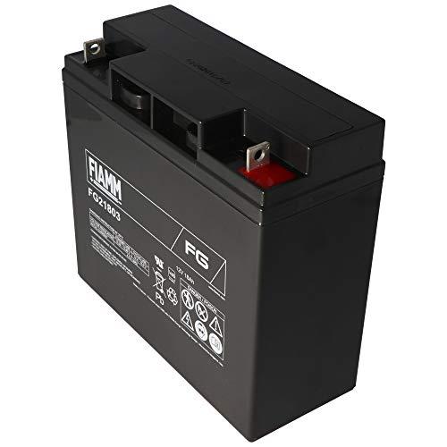 FIAMM Batterie au plomb rechargeable FG21803, 12V, Lead-Acid [ Batterie au plomb ]