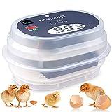 Incubadora automática de 9 a 12 huevos de gallinas o patos con pantalla digital de la temperatura, incubadora automática mini para cubrir gallinas, pato o cojita.