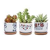 T4U 7CM Macetas para Cactus de Cerámica con Plato de Bambú Paquete de 3, Pequeña Maceteros...