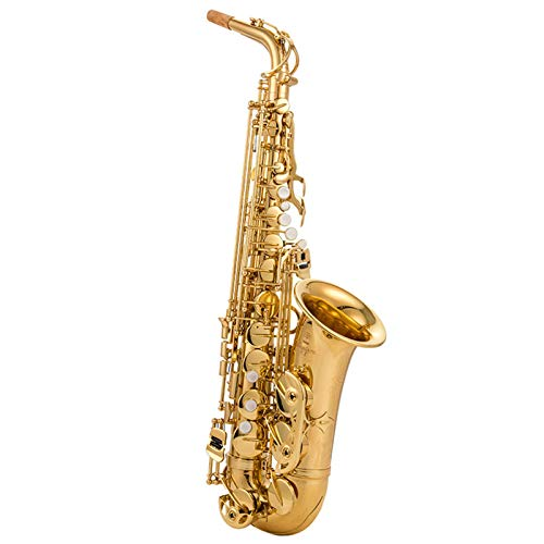 DUTUI Saxofón Alto En Mi Bemol, Instrumento De Viento para Niños, Instrumento De Prueba De Banda para Principiantes para Adultos, Juego Completo De Saxofón para Principiantes